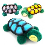 Musical Turtle with LED lighting